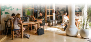 People working at Dojo Bali